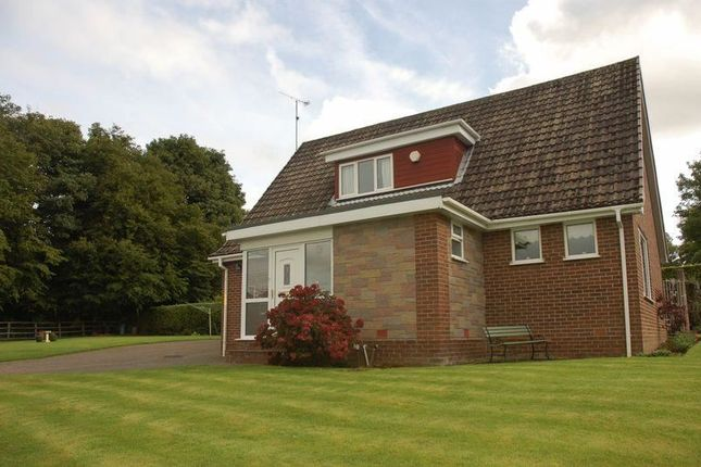 Thumbnail Bungalow to rent in High View, Ponteland, Newcastle Upon Tyne