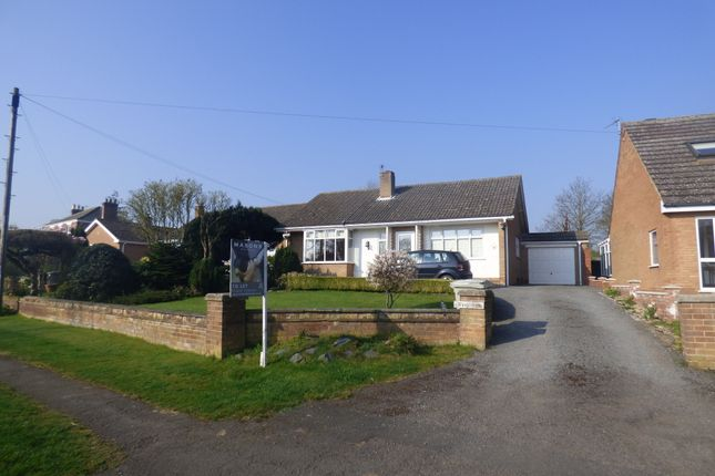 Thumbnail Detached bungalow to rent in Louth Road, Fotherby