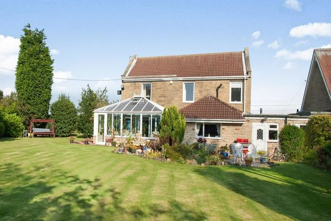 Thumbnail Detached house for sale in South Side House South Side, North Seaton Village, Ashington