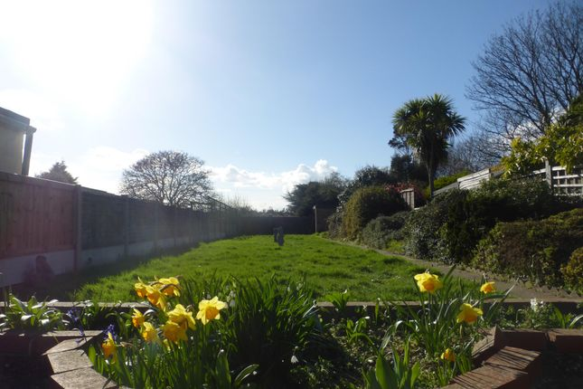 Thumbnail Property to rent in Jaywick Lane, Clacton-On-Sea