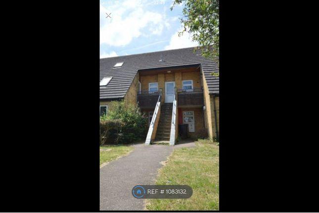Studio to rent in Redhall Close, Hatfield AL10