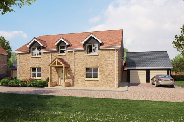 Thumbnail Detached house for sale in Low Road, Burwell, Cambridge
