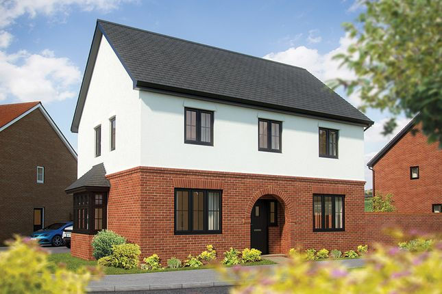"Thumbnail Detached house for sale in ""The Chestnut"" at Braymere Road, Cambridgeshire, Peterborough"