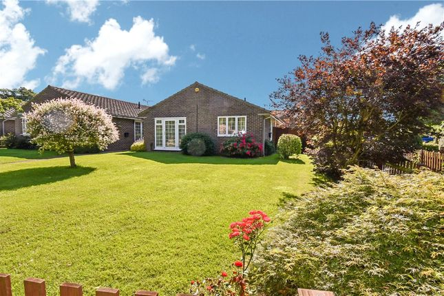 Thumbnail Detached bungalow for sale in Welch Way, Rownhams, Southampton