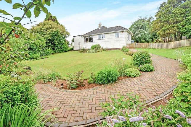 Thumbnail Bungalow for sale in Stoney Hill, Trewoon, St. Austell