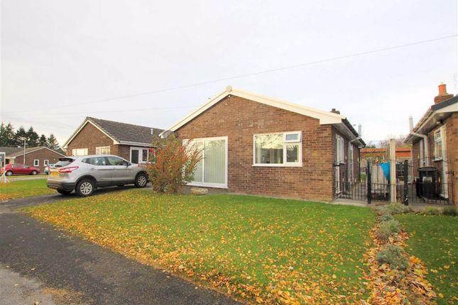 Thumbnail Detached bungalow for sale in Lon Yr Ysgol, Caerwys, Flintshire