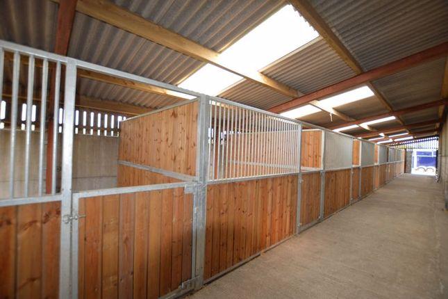 Thumbnail Equestrian property for sale in Sennicar Lane, Haigh