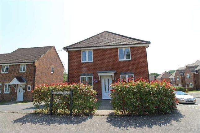 Thumbnail Detached house for sale in Cooden Ledge, St Leonards-On-Sea, East Sussex
