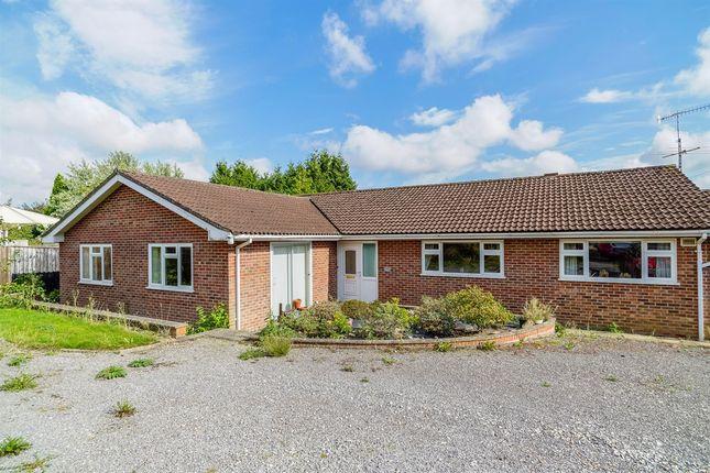 Thumbnail Detached bungalow for sale in St. Leonards Avenue, Blandford Forum