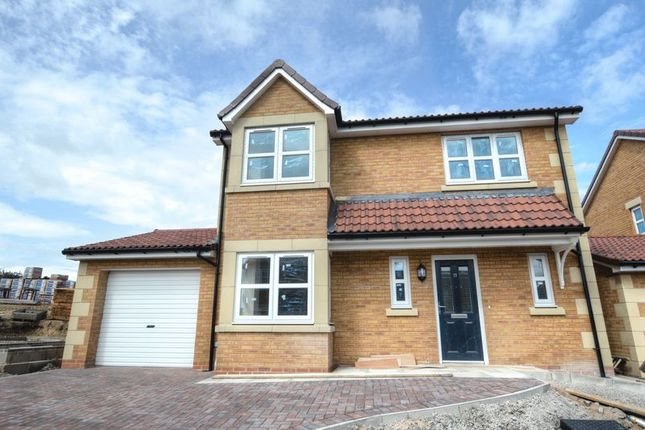 Thumbnail Detached house for sale in Yeavering Court, Belford, Northumberland