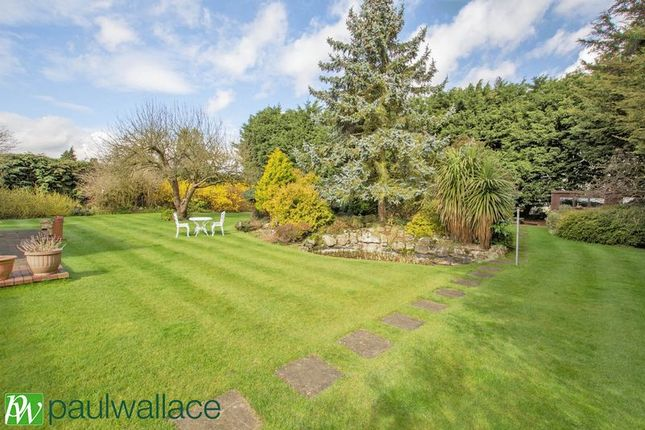 Thumbnail Bungalow for sale in Hamlet Hill, Roydon, Harlow