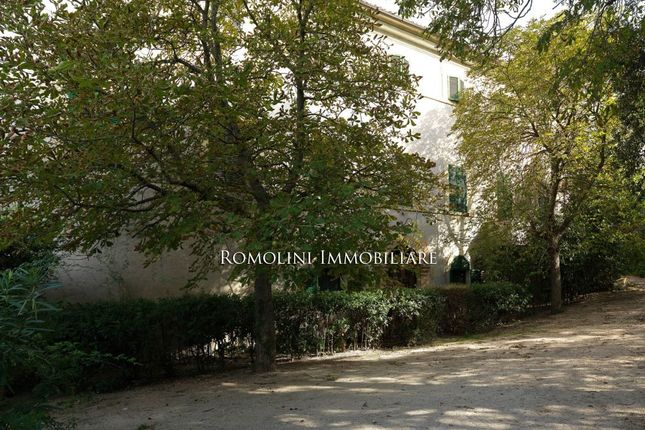 Villa With Organic Olive Grove For Sale In Trevi, Umbria