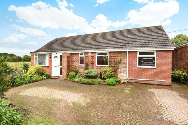 Thumbnail Detached bungalow for sale in Vine Gardens, Winchester Road, Bishops Waltham, Southampton
