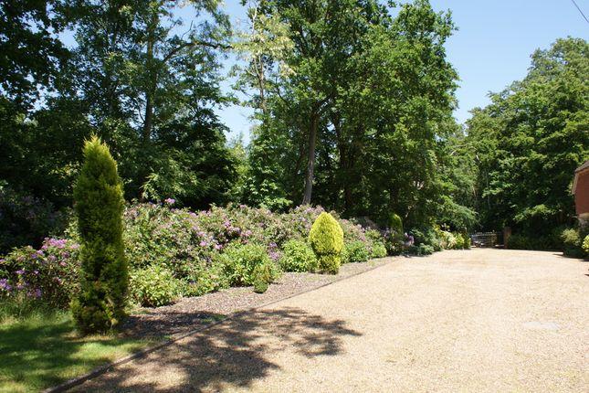 Photo 14 of Rodona Road, St George's Hill, Weybridge, Surrey KT13