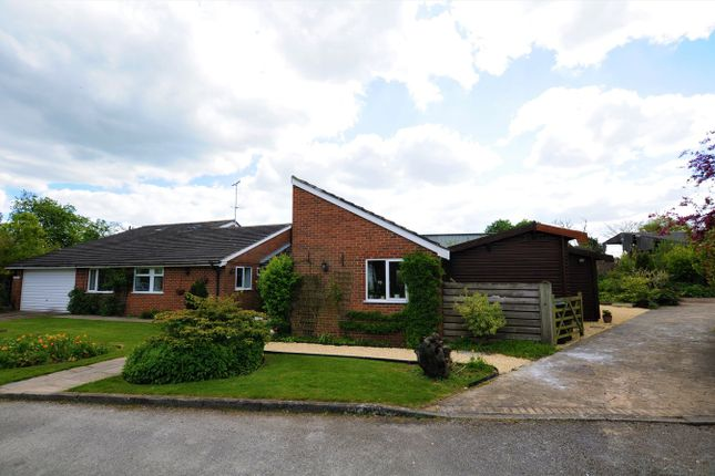 Thumbnail Detached bungalow for sale in Longford, Ashbourne