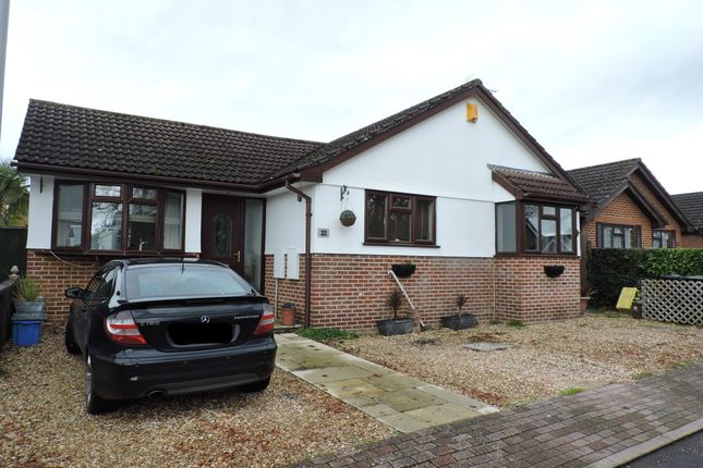 Thumbnail Detached bungalow to rent in Burn Close, Verwood