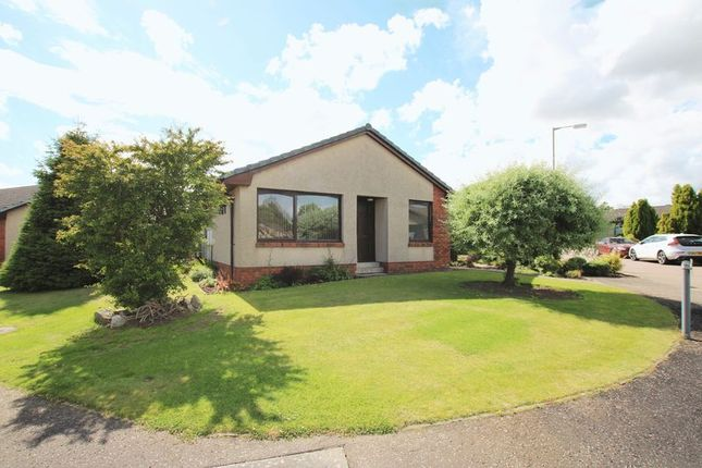 Thumbnail Detached bungalow for sale in Blairs Croft, Letham, Forfar