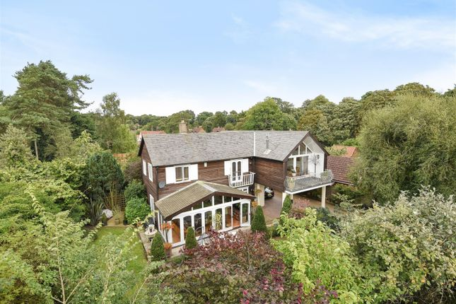 Thumbnail Detached house for sale in Hall Lane, Postwick, Norwich