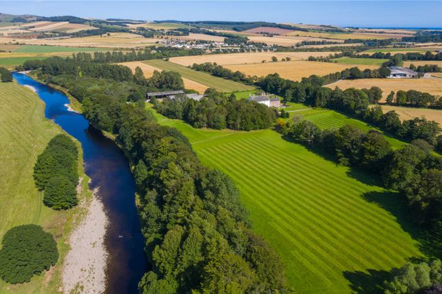 Aerial of Gallery, By Montrose, Angus DD10