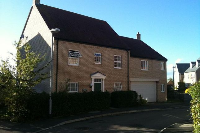 Thumbnail Link-detached house to rent in Brooke Grove, Ely