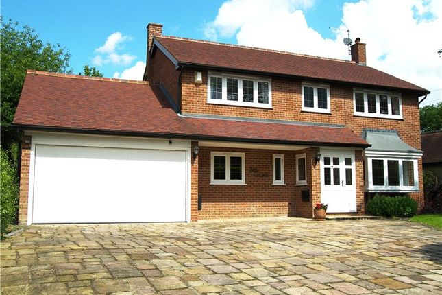 Thumbnail Detached house to rent in Hogmoor Lane, Hurst, Berkshire