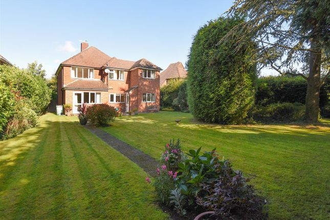 Thumbnail Detached house for sale in Norris Gardens, Havant