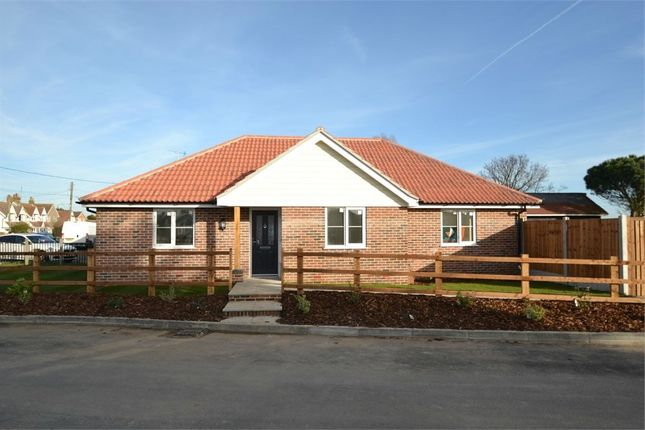 Thumbnail Detached bungalow for sale in Whitegates Court, Holland Road, Little Clacton, Clacton-On-Sea