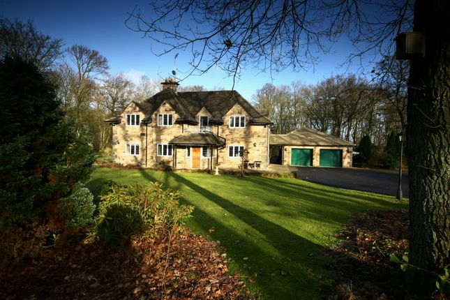 Thumbnail Detached house to rent in Gubeon Wood, Tranwell Woods, Morpeth