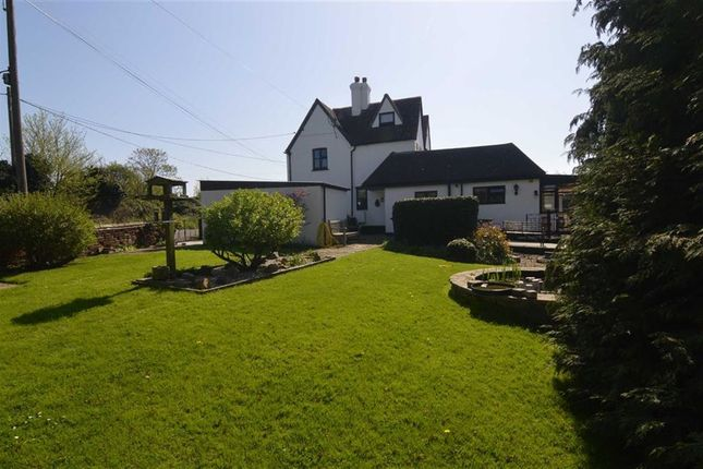 Thumbnail Cottage for sale in Rookery Hill, Old Corringham, Essex