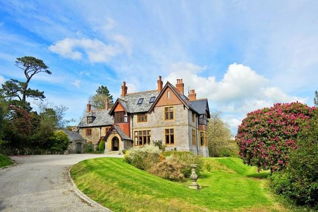 Thumbnail Detached house for sale in Cleeve, Ivybridge