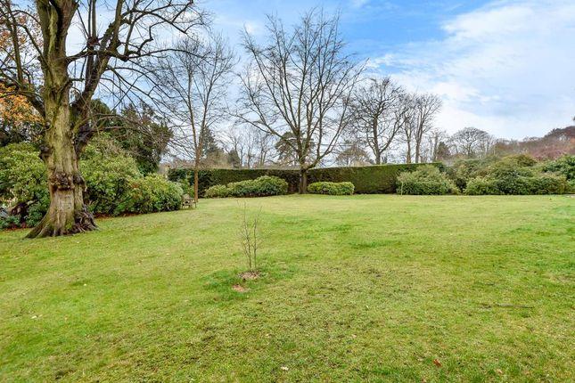Garden View of Camberley, Surrey GU15