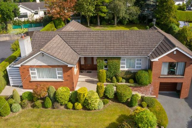 Thumbnail Detached house for sale in Clonallon Road, Warrenpoint, Newry