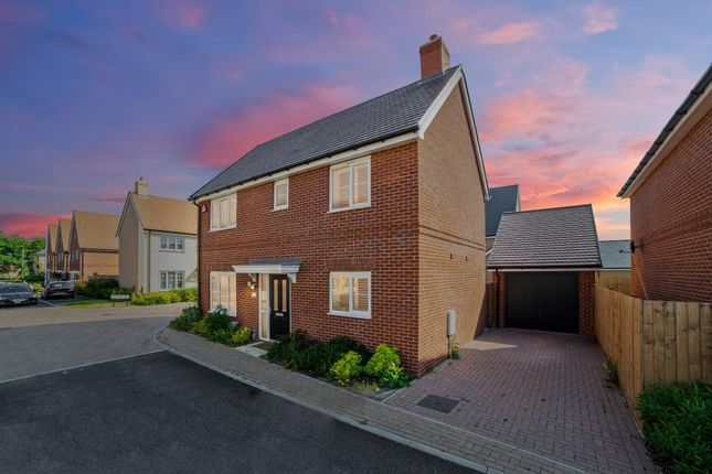 Thumbnail Detached house to rent in Dudley Road, Colchester