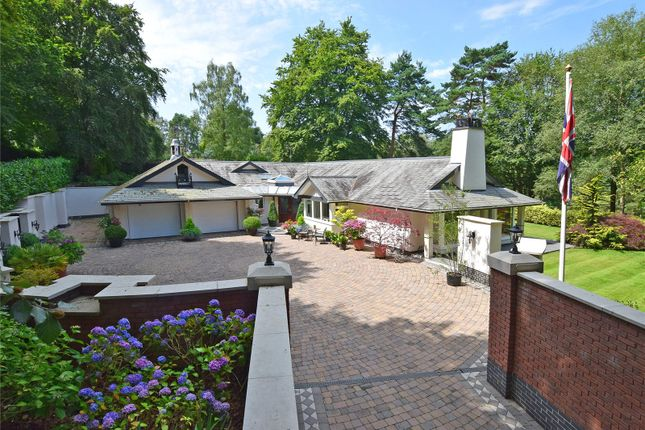 Thumbnail Bungalow for sale in Higher Broad Oak Road, West Hill, Ottery St. Mary, Devon