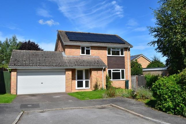 Thumbnail Detached house to rent in 38 Bakers Close, Bishops Hull, Taunton, Somerset