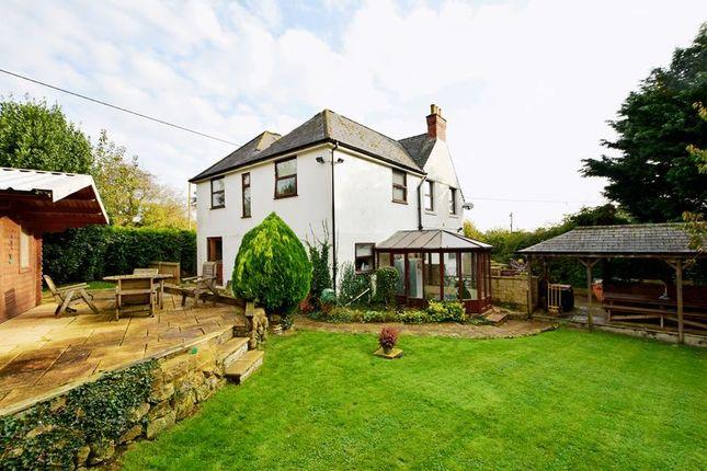 Thumbnail Detached house for sale in Longburton, Sherborne