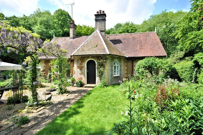 Thumbnail Cottage for sale in Common Road, West Bilney, King's Lynn