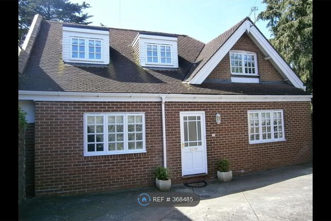 Thumbnail Detached house to rent in Trumlands Road, Torquay