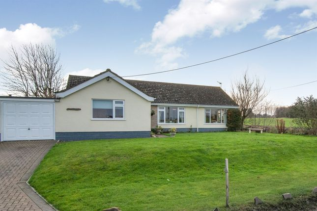 Thumbnail Detached bungalow for sale in Heath Road, Kenninghall, Norwich