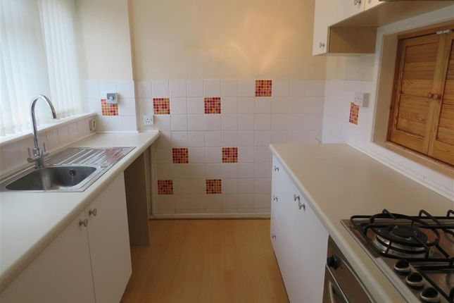 Thumbnail Property to rent in Gipsy Lane, Leicester