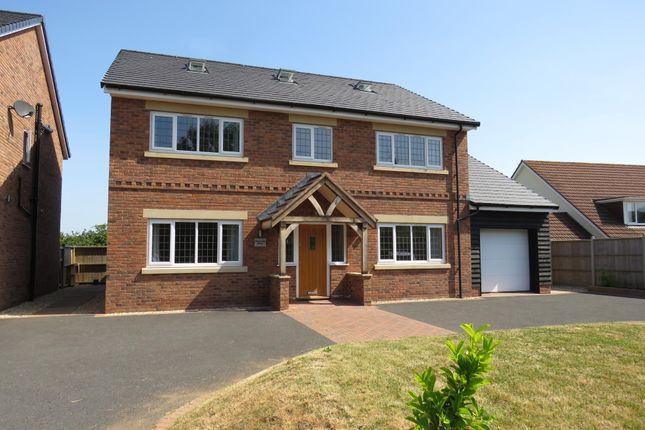 Thumbnail Detached house to rent in Hopcott Road, Minehead