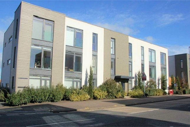 Thumbnail Flat to rent in Cunningham Court, Taunton