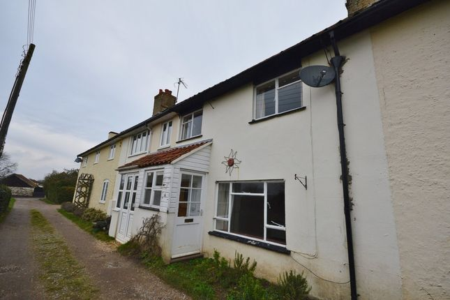 Thumbnail Terraced house to rent in The Terrace, Snape, Saxmundham
