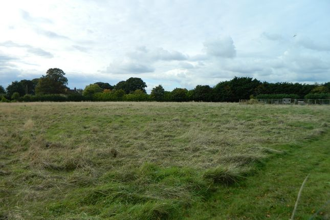 Thumbnail Land for sale in Frating Road, Ardleigh, Colchester