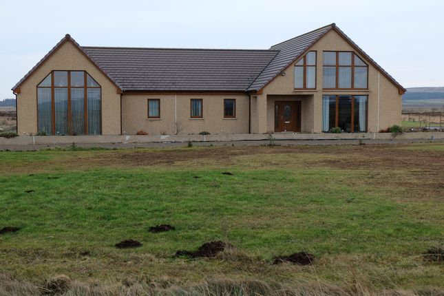 Thumbnail Property for sale in Halkirk