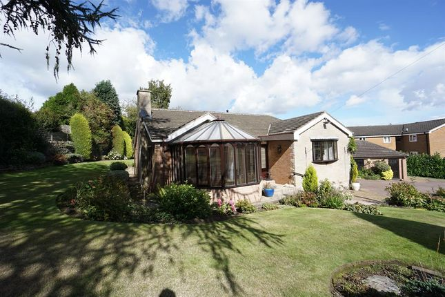 Thumbnail Detached bungalow for sale in Bland Lane, Wadsley, Sheffield