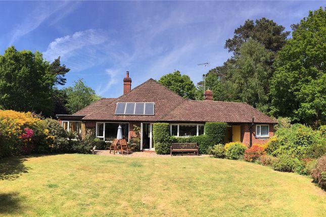 Picture No. 21 of Cricket Close, Tilford Road, Hindhead, Surrey GU26