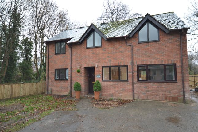 Thumbnail Detached house to rent in Winton Close, Winchester, Hampshire