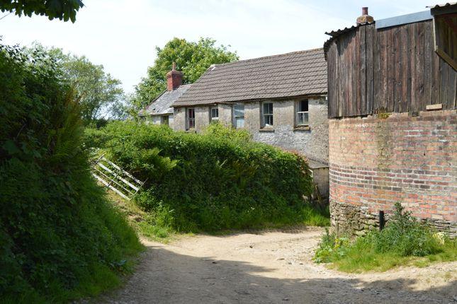 Thumbnail Farm for sale in Stoke Rivers, Barnstaple, North Devon