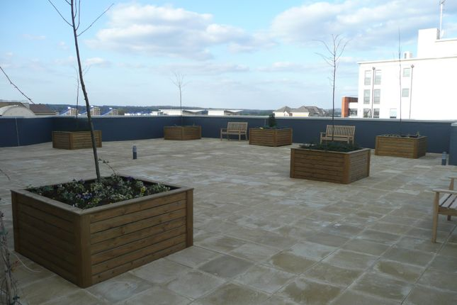 Roof Terrace of Watlington Street, Reading RG1